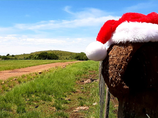 Entre Vírgulas: O Natal na pandemia