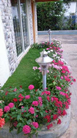 garden Maintenance bangalore (18).jpeg