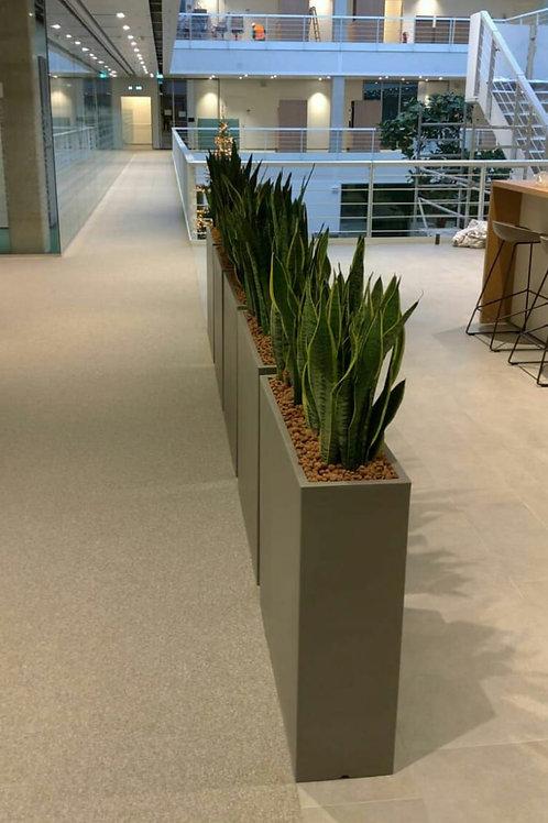 """FRP Planter rectangular -Length 36"""" Width 12"""" Height 24"""""""