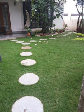garden Maintenance bangalore (27).jpeg
