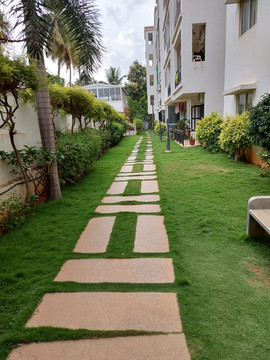garden Maintenance bangalore (54).jpeg