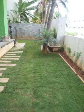 garden Maintenance bangalore (25).jpeg