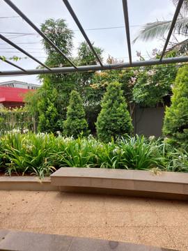 garden Maintenance bangalore (63).jpeg