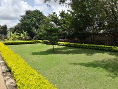 garden Maintenance bangalore (52).jpeg