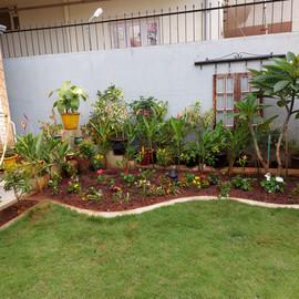 garden Maintenance bangalore (36).jpeg