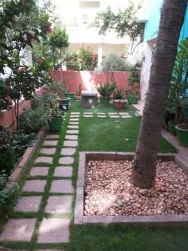 garden Maintenance bangalore (28).jpeg