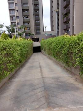 garden Maintenance bangalore (65).jpeg