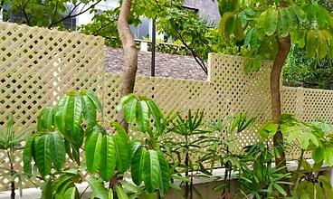 Ivory Trellis Fence.png
