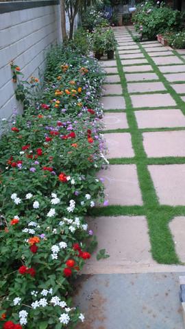 garden Maintenance bangalore (24).jpeg