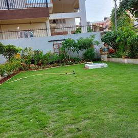 garden Maintenance bangalore (38).jpeg
