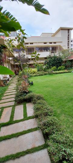 garden Maintenance bangalore (43).jpeg