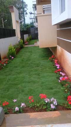 garden Maintenance bangalore (30).jpeg
