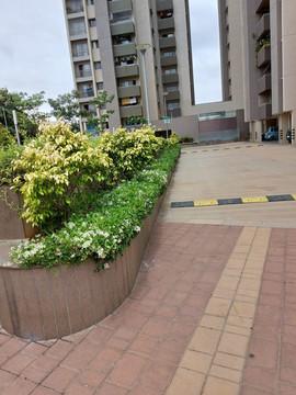 garden Maintenance bangalore (64).jpeg