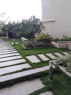 garden Maintenance bangalore (46).jpeg