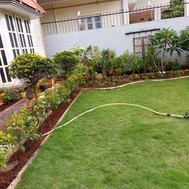 garden Maintenance bangalore (37).jpeg