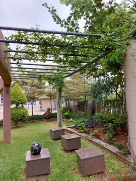 garden Maintenance bangalore (62).jpeg