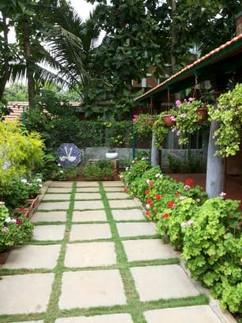 garden Maintenance bangalore (16).jpeg
