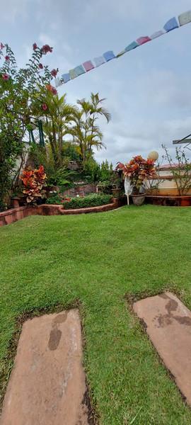 garden Maintenance bangalore (39).jpeg
