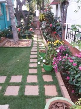 garden Maintenance bangalore (29).jpeg