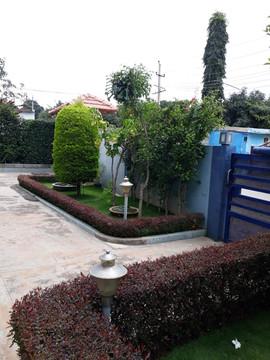 garden Maintenance bangalore (35).jpeg