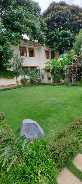 garden Maintenance bangalore (44).jpeg