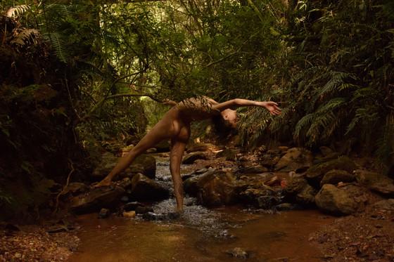 Uma mulher nua está de pé e de perfil,  sobre um riacho estreito e raso. Ela segura no galho de uma árvore e inclina o tronco, o braço esquerdo e a cabeça para trás. Mantém o pé direito fixo dentro da água, enquanto  ergue graciosamente a perna esquerda para frente no ar. A mulher é magra, tem pele clara e cabelos castanhos. Há uma tatuagem em sua panturrilha direita. O rio tem algumas pedras grandes espalhadas, e terra com pedrinhas em seu leito, o que dá um tom marrom às  águas. As margens são tomadas por plantas baixas e árvores altas, que formam um emaranhado de folhas no alto, que sombreia o rio.
