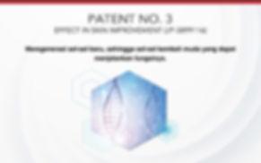 Hak-Paten3-SOP100.jpeg