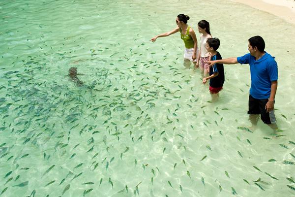 pulau-payar-marinepark-04