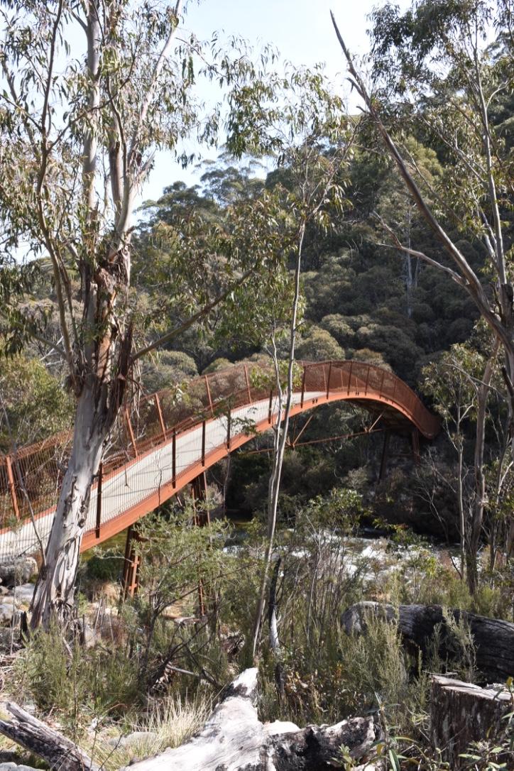 Bridge over the Thredbo River