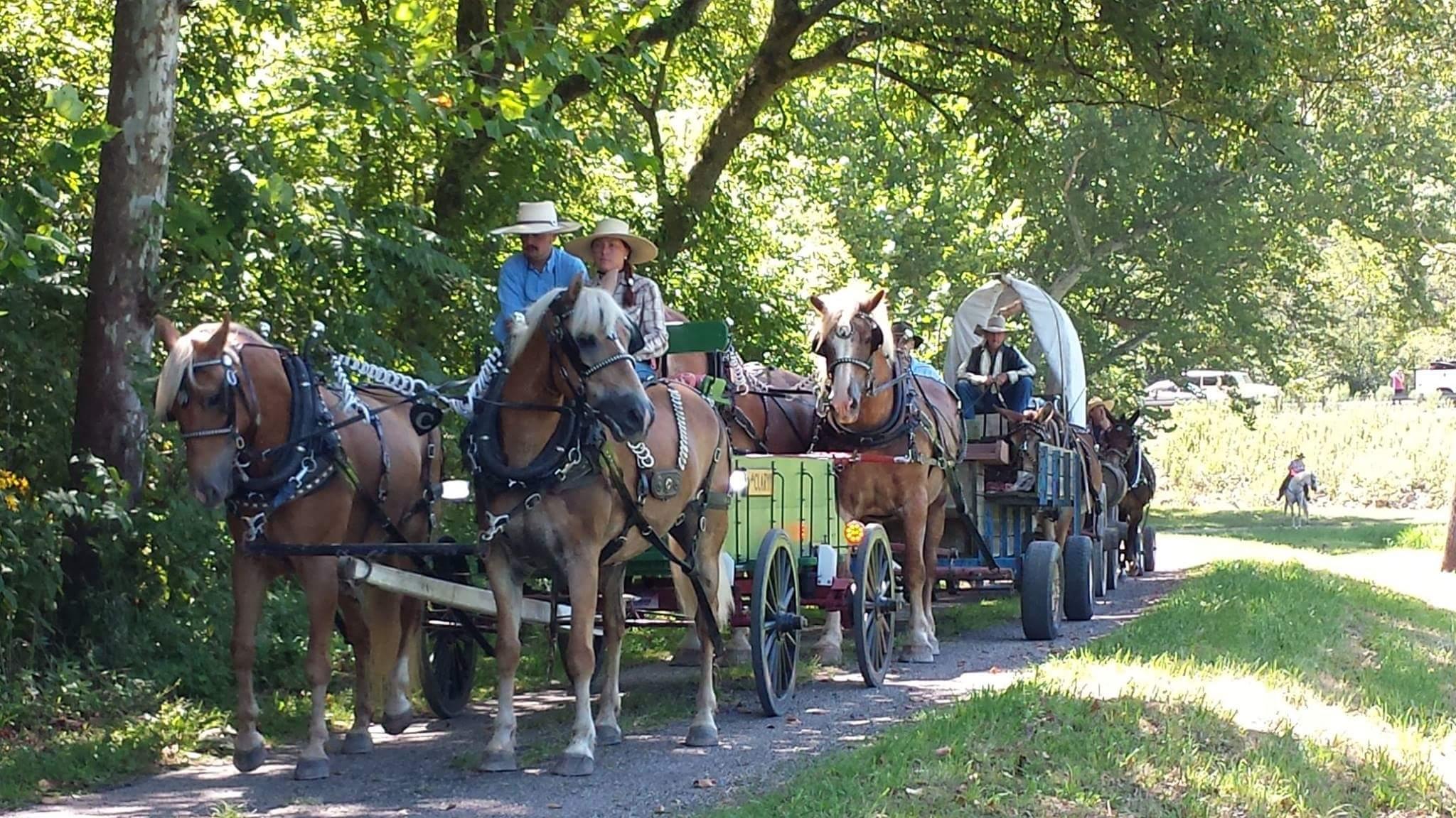 2015 County Bicentennial Wagon Train
