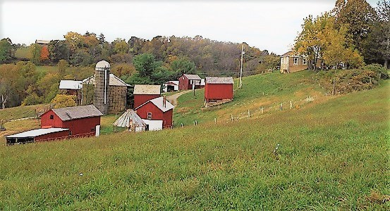 Stone Barn Farm