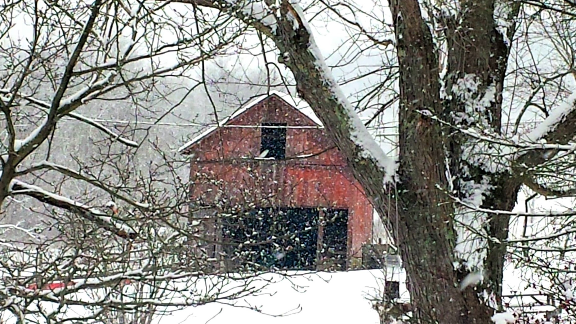 Rural winter solitude
