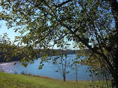 Wilson Lake 2