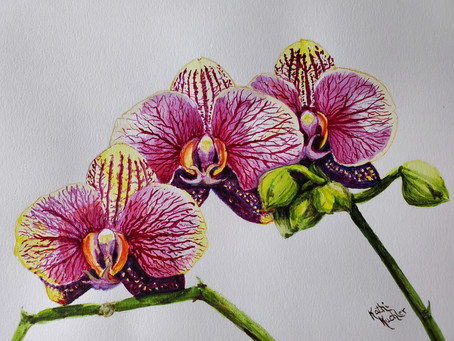"Meet Artist Kathi Kuchler ""Botanist"" with a Brush! Published in World Wide Art Magazine #4 2020"