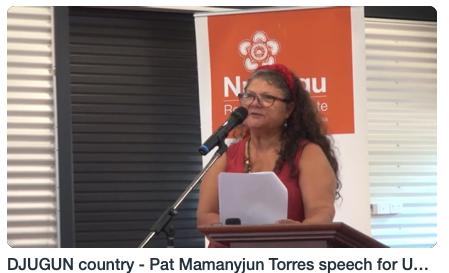 DJUGUN country - Pat Mamanyjun Torres speech for UN rapporteur