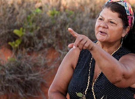 Advance Australia fare: Indigenous food past, present and future