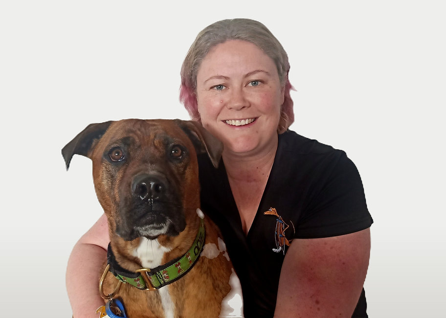 Karen Valu Animal Orthopaedics Christchurch.jpg