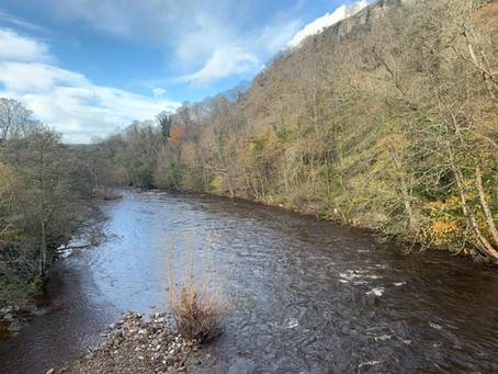 River Swale in Autumn Sunshine