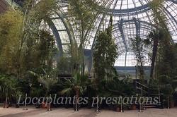 Locaplantes au Grand Palais