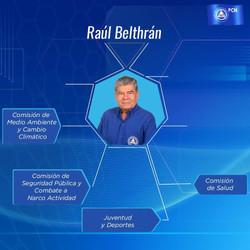 RAUL BELTRAN
