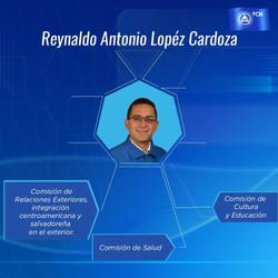 REYNALDO CARDOZA