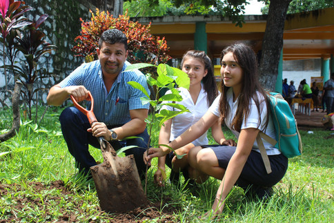 Entrega de más de 400 árboles a las personas que asistieron al Festival Familiar - Alcaldía San Fran
