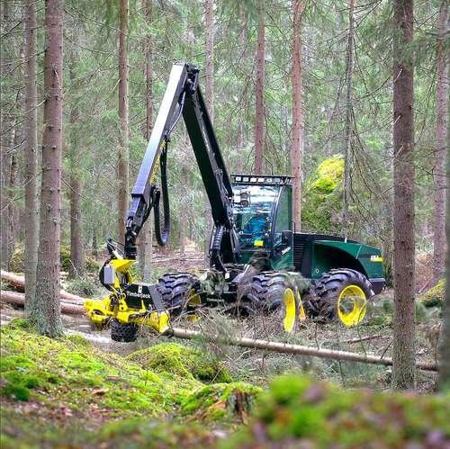sawn timber harvester
