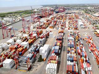 Exolgan avanza con el puerto sin papeles