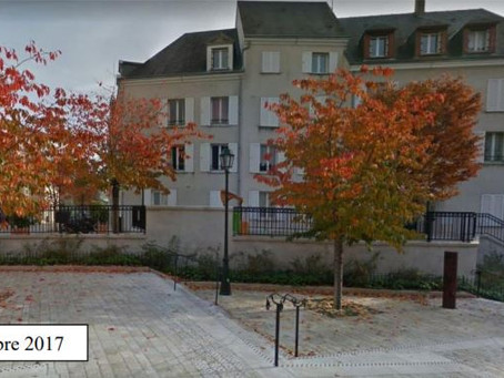 Un massif sur une place du centre d'Orléans