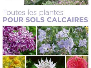 Toutes les plantes pour un sol calcaire