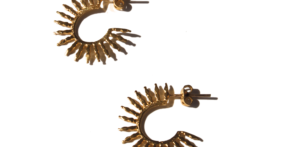Spikier earrings