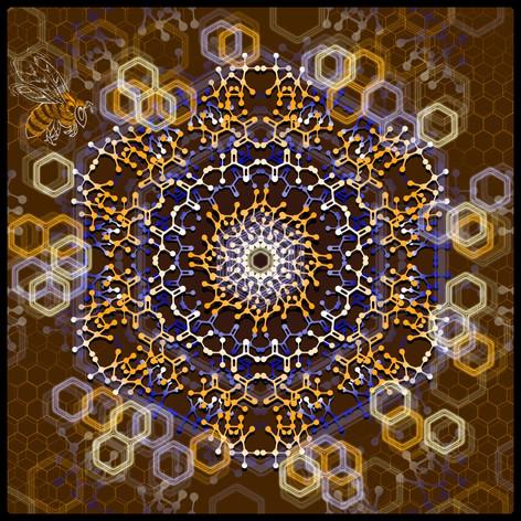 Honey Molecular Mandala