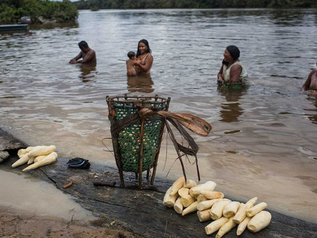 'The river is dead': is a mine polluting the water of Brazil's Xikrin tribe?