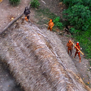 'Uncontacted' Amazon Tribe Members Are Reported Killed in Brazil